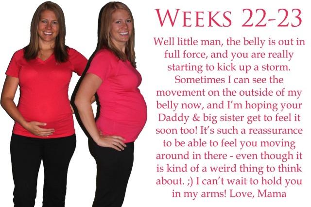 Weeks22-23 copy