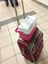 This little rubbermaid cooler worked perfectly for milk storage - TSA never even opened it!